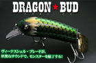DRAGON BUD