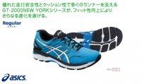 目玉アシックス(asics) GT-2000 NEW YORK5(カラー【4101】)