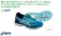 目玉アシックス(asics) LADY GT-2000 NEW YORK5(カラー【4301】)