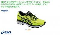 目玉アシックス(asics) GT-2000 NEW YORK 5(カラー【0790】)