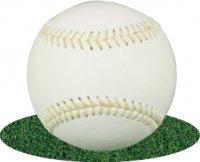 硬式練習球(アラミド糸 黄色)1ダース ネーム不可