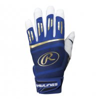 <img class='new_mark_img1' src='//img.shop-pro.jp/img/new/icons21.gif' style='border:none;display:inline;margin:0px;padding:0px;width:auto;' />ローリングス(Rawlings)バッティング手袋 両手 (カラー【BLU】ブルー)