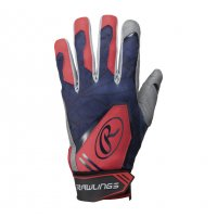 <img class='new_mark_img1' src='//img.shop-pro.jp/img/new/icons21.gif' style='border:none;display:inline;margin:0px;padding:0px;width:auto;' /> ローリングス(Rawlings)バッティング手袋 両手 (カラー【N/RD】ネイビー/レッド)