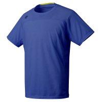 デサント(DESCENTE)Tシャツ(カラー【BL】)