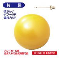 トレーニングボール 500g ウエイトボール
