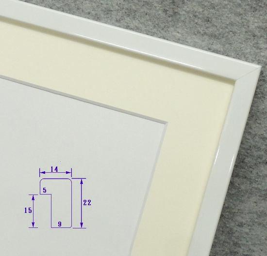 F0水彩額縁 MM05 白 インチ額 アクリル仕様
