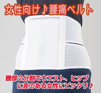 腰痛ベルト:アルファライト