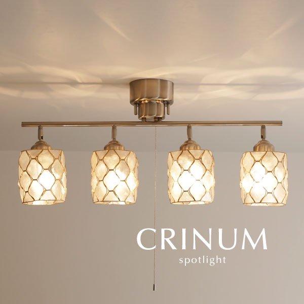 4灯スポットライト カピス貝 LED [CRINUM/ナチュラル]