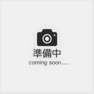 【中古】ROLEX(ロレックス) コスモグラフ デイトナ スチールブラック ランダム品番 116519LN