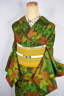 アラベスク地紋グリーンにボタニカルガーデンモダンなウール紬単着物