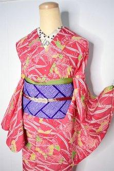緋色地に露芝と揚羽蝶の染模様美しいウール単着物