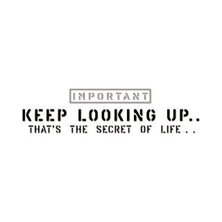 上を見続ける...それが生きるコツさ | コトワザ ステンシル 転写ステッカー | PST064