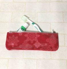 歯ブラシケース 5
