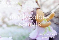 Morlycolors ポストカード 11