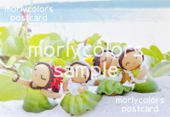 Morlycolors ポストカード 12