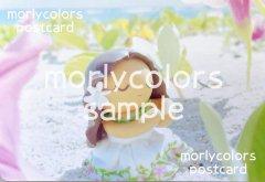Morlycolors ポストカード 17