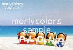Morlycolors ポストカード 20