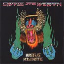 Hiatus Kaiyote / Choose Your Weapon (2LP/180g)