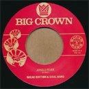 "Bacao Rhythm & Steel Band / Jungle Fever - Tender Trap (7"")"