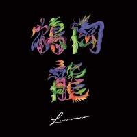 鶴岡龍とマグネティックス:LUVRAW (LP)