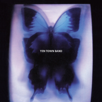 YEN TOWN BAND : Swallowtail Butterfly〜あいのうた〜7inch analog record single (7