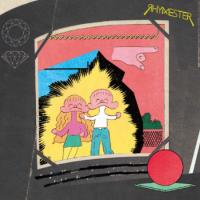 RHYMESTER:ダンサブル (LP)