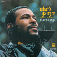 MMARVIN GAYE / What's Going On - Original Detroit Mix (LP/with Obi)
