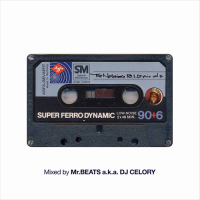 Mr.BEATS a.k.a. DJ CELORY : The Notorious B.I.G. Mix vol.2 (MIX-CD)
