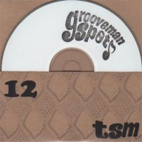 grooveman Spot : The Stolen Moments Vol.12 (MIX-CDR)