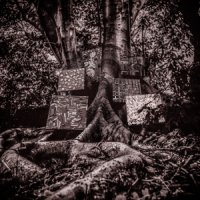 Kamasi Washington : Harmony of Difference (12