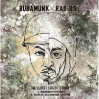"Budamunk / Radius : The Secret Life Of Sound (7"")"