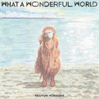 予約商品・堀込泰行 : What A Wonderful World(LP)