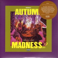 DJ KIYO : AUTUMN MADNESS 2 (MIX-CD)
