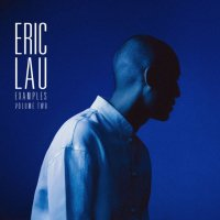 Eric Lau : Examples Volume Two (LP/color vinyl)