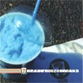 V.A. / Brainfreeze Breaks (CD/USED/M)
