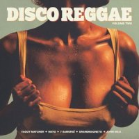 V.A. : DISCO REGGAE VOL.2 (LP)