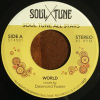 Soul Tune All Stars : World / Natural Feeling (7