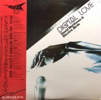 David Matthews & Electric Birds : Digital Love (LP/USED/VG+)