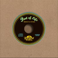 DJ TOYODA : DRIP with MUSIC #10 - Part Of Life (MIX-CD)