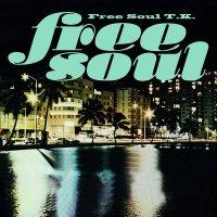 V.A.(橋本徹) : Free Soul T.K. (2CD)