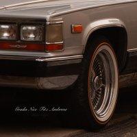 Gradis Nice & Fitz Ambro$e : Raw Clipz (CDR)