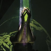 Dakim : youdecide (LP)