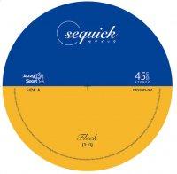 """sequick : FLEEK / TickTack (7"""")"""