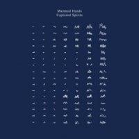 予約商品・Mammal Hands : Captured Spirits (2LP/LTD Clear Vinyl)