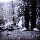 DJ Adlib / Hi-Hat Club Vol. 6 - Haus & Garten (LP)