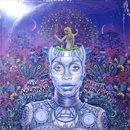 Erykah Badu / New Amerykah Part Two - Return Of The Ankh (2LP)