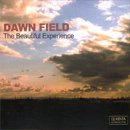 DJ Kenta / Dawn Field - The Beautiful Experience (MIX-CD/紙ジャケット仕様)