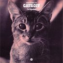 Cat Maphiaar / welcome to CATROIT (MIX-CDR)