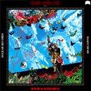 HAKUCHUMU / AKASHIC DUBBING REMIX:16FLIP & MASS-HOLE (LP)