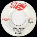 Slowly / Mariwana 2014 (7